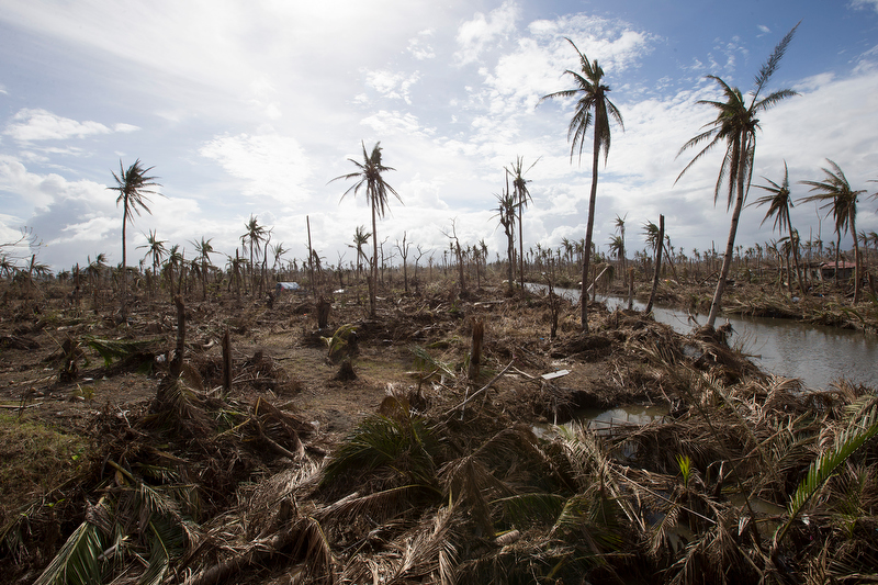 Typhoon Haiyan laid waste to vast areas near Tanauan, Philippines. A UMNS photo by Mike DuBose