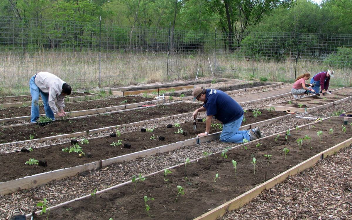 Regardless of rain, drought or summer heat, the volunteer gardeners at the Garden of Eatin' in Bartlesville, Okla., dig in to bring fresh fruit and veggies to the hungry in their community. The project started as a 2009 Change the World project.