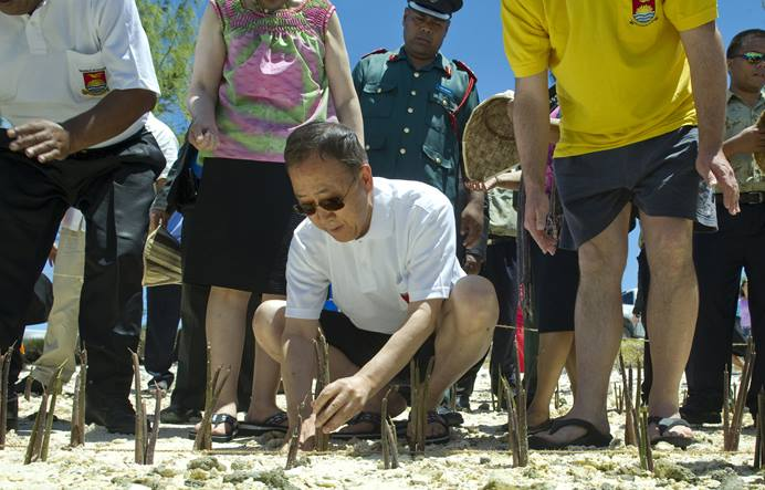 U.N. Secretary-General Ban Ki-moon plants mangrove shoots on Tarawa, the main atoll in the Pacific island nation of Kiribati. Mangroves help to protect against the rising sea levels caused by climate change. Photo by Eskinder Debebe, United Nations