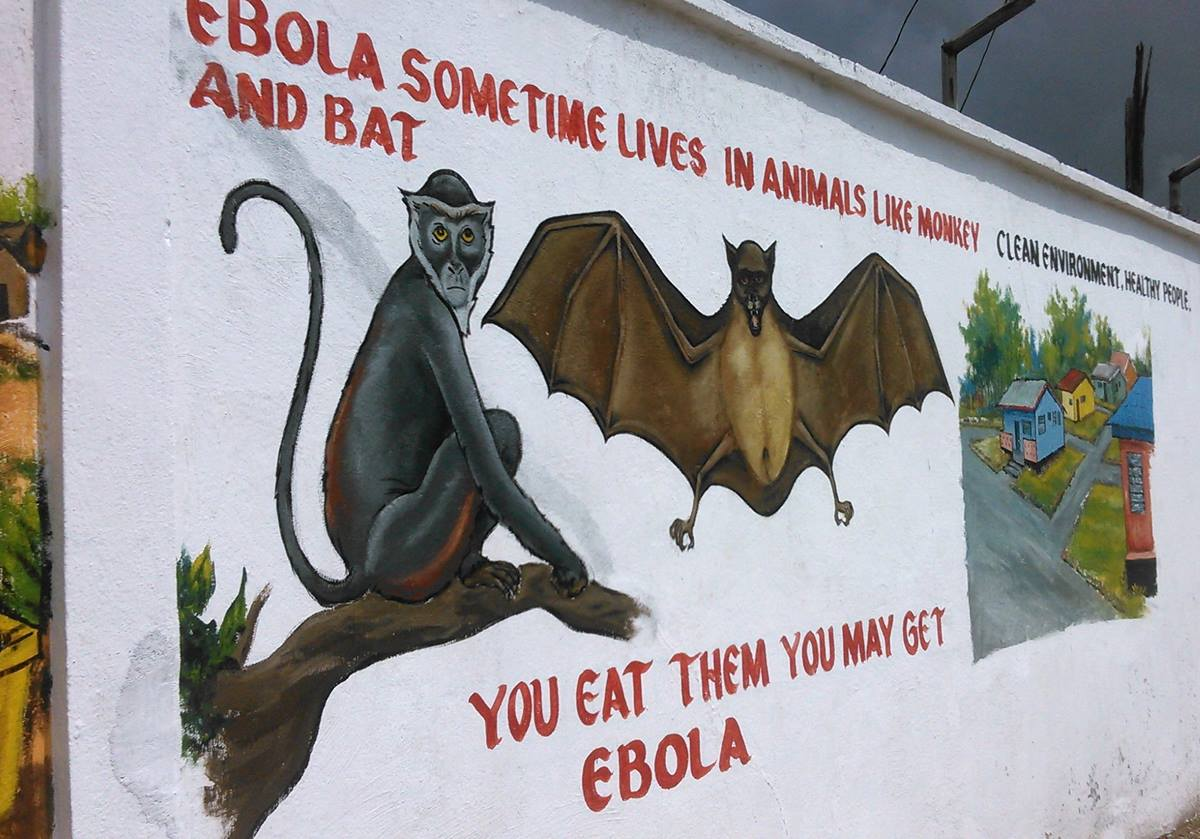 A mural warns against eating animals like bat and monkey as they are potential spreaders of the Ebola virus. This wall painting is one of many used in Liberia in order to use the visual arts to communicate information about Ebola.