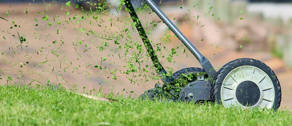 Rev. Matt Rawle often finds God's presence in the ordinary, like mowing his backyard. Photo in the Public Domain.