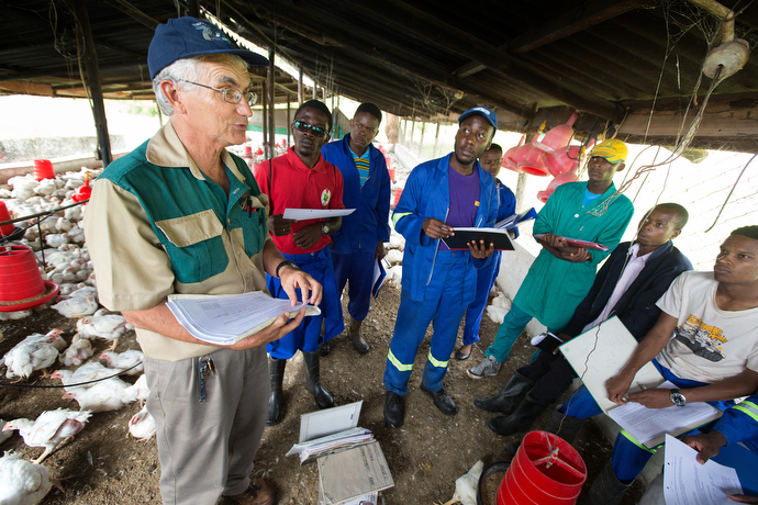 Larry Kies (left) leads agriculture students through a training exercise in the chicken house at the Africa University farm in Mutare, Zimbabwe. Kies, a United Methodist missionary, serves as the farm's technical adviser. Photo by Mike DuBose, UMNS.