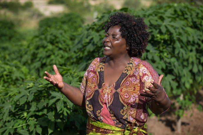 Margaret Tagwira describes the nutritional advantages of chaya amid a field of the fast-growing vegetable. Photo by Mike DuBose, UMNS.