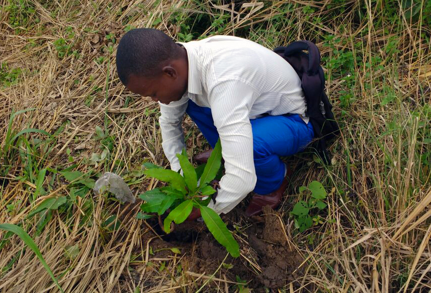 A man sets a tree sapling into the ground in Kindu, Democratic Republic of Congo. The church is working to fight against global warming and to demonstrate appreciation for God's creation. Photo by Judith Yanga, UMNS.