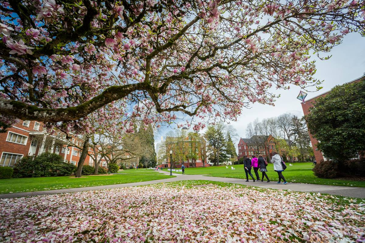 Willamette University, in Salem, Oregon, was founded in 1842 as the first university established in the western United States. It is one of the 119 United Methodist-related schools in the U.S. Photo courtesy of Willamette University.