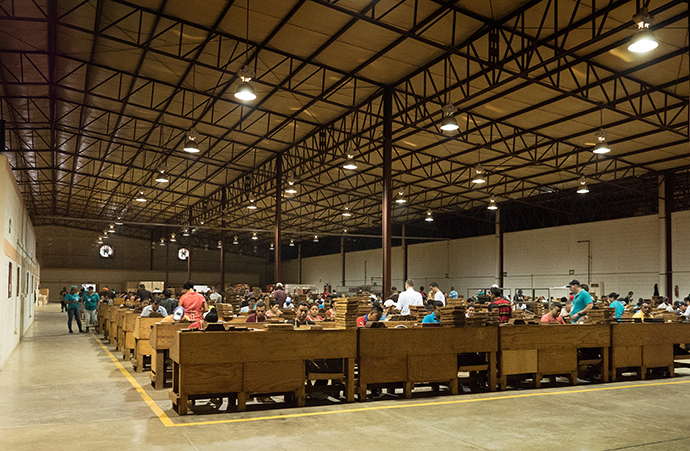 Bunchers and rollers sit side by side in teams of two in a large warehouse at the Tabacos de Oriente cigar factory in Danlí, Honduras. Photo By Kathy L. Gilbert, UMNS.