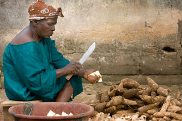 A woman prepares cassava roots outside Trinite United Methodist Church in Yopougon, Côte d'Ivoire. A UMNS photo by Mike DuBose.
