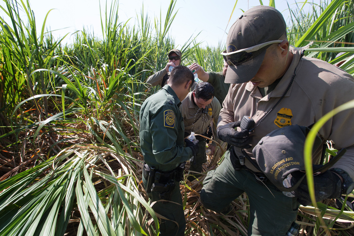 U.S. Border Patrol agents pour water over the head of a fellow agent who became overheated while searching a sugarcane field for a group of people who had entered the United States illegally. The high temperature for the day was 100 degrees. Photo by Mike DuBose, UMNS.