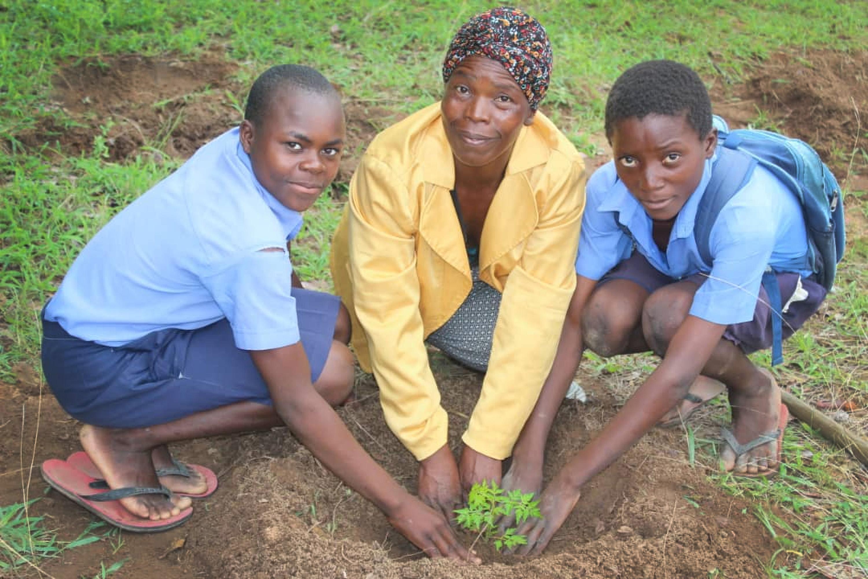 Shamiso Musapenya, Estery Mahapare Ngorima and Tendai Muganho plant a tree in an effort to combat deforestation in Zimbabwe. Photo by Kudzai Chingwe, UMNS