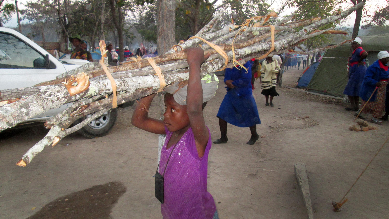 Memory Nyamuriswa, age 10, sells firewood to raise money for her school fees. Photo by Kudzai Chingwe, UMNS