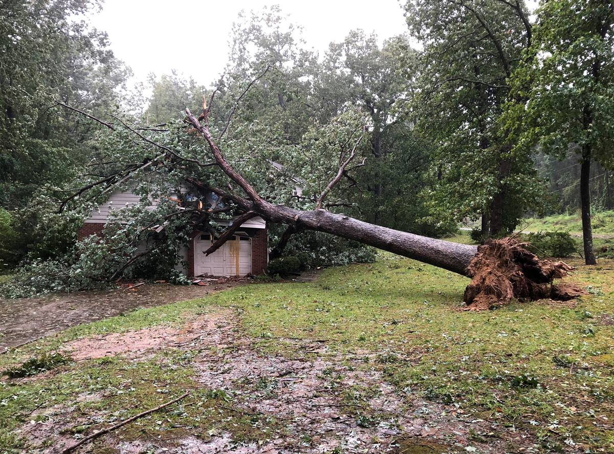 A tree fell on the parsonage of the Rev. Thomas M. Greener and his wife shortly after his wife came downstairs for dinner. No one was injured. The Greeners are among the thousands of people whose lives have been upended by Florence's wreckage in the Carolinas. Photo courtesy of Thomas M. Greener.