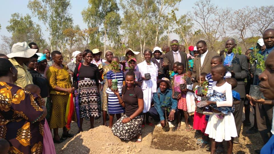 Shamiso Mupara, kneeling, leads a tree-planting in Marange with United Methodist church members at Mutsago Circuit. Photo by Kudzai Chingwe, UMNS.