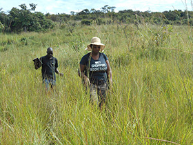 Zimbabwe missionary, Lorraine Charinda, and Yelesani Shachobe, an irrigation technician, look for a new site to install an irrigation system at Kamisamba Farm in North Katanga, Congo. Photo courtesy of Lorraine Charinda.