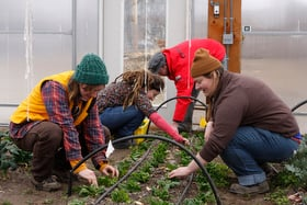 Students at Green Mountain College in Poultney, Vt., work in a campus garden in 2012. The United Methodist-related college announced in January that it would close some time after the 2019 spring semester, also because of financial issues. File photo courtesy of Green Mountain College.