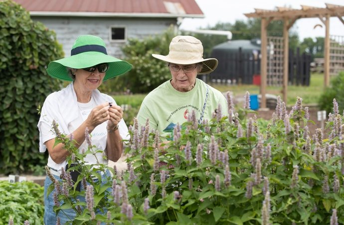 Cheryl Marcum (left) of Stockton (Mo.) United Methodist Church and Diane Rusnak of Front Royal (Va.) United Methodist Church sample herbs at The Giving Garden at Franklin (Tenn.) First United Methodist Church. They were attending the 2019 United Methodist Creation Care Summit. Photo by Mike DuBose, UM News.