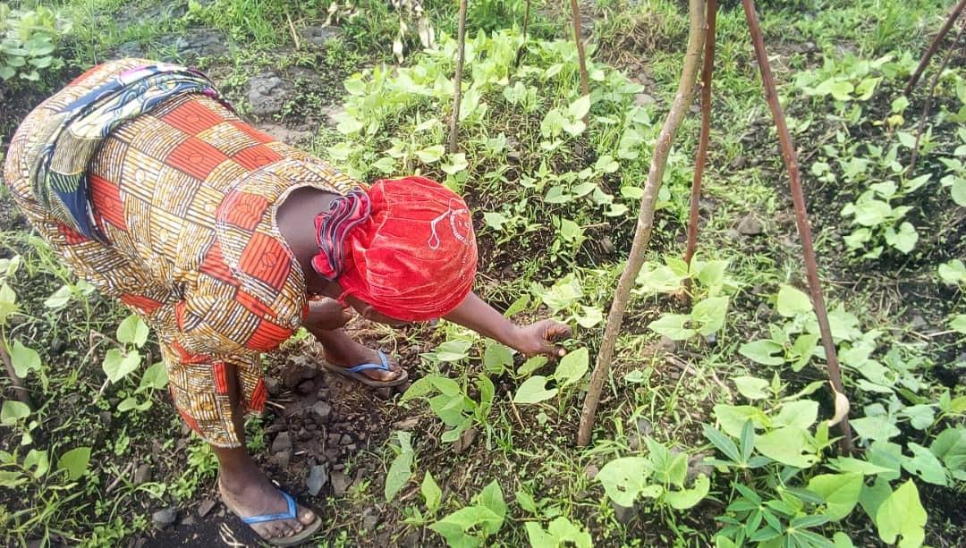 Lusinda Jacqueline, présidente des femmes Méthodistes Unies de Bunyakiri, cultive des haricots dans les champs de l'est du Congo, où les femmes jouent un rôle de base dans la lutte contre la faim par l'agriculture. Photo de Philippe Kituka Lolonga, UM News.