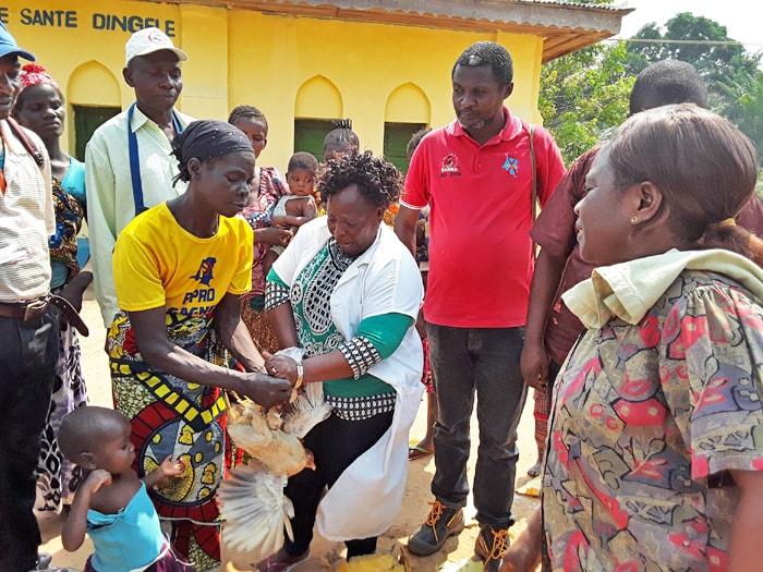 Denise Mondji Coordinatrice du projet Santé de la Mère et de l'enfant remet des poules de race améliorée et les semences à Mme Odette Akatshi en présence de Mr. Albert Ndjate Superviseur de la Zone de Santé de Katako-Kombe. Photo de François Omanyondo, UMNS.
