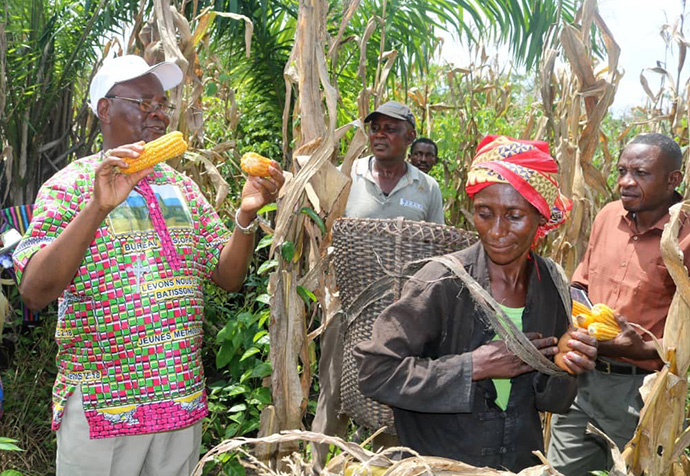 Bishop Gabriel Yemba Unda takes part in the corn harvest in a field cultivated by United Methodist Men in Eastern Congo. The men's organization began the farming activities in 2019 in order to contribute to the fight against famine in the country. Photo by Chadrack Tambwe Londe, UM News.
