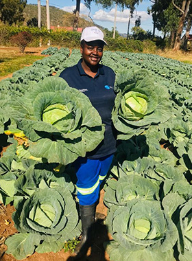 The Rev. Tafadzwa Musona, Mutasa Nyanga District superintendent, displays some of the 2,000 cabbages and other produce she sells to supermarkets in Mutare, Zimbabwe. Photo by Kudzai Chingwe, UM News.