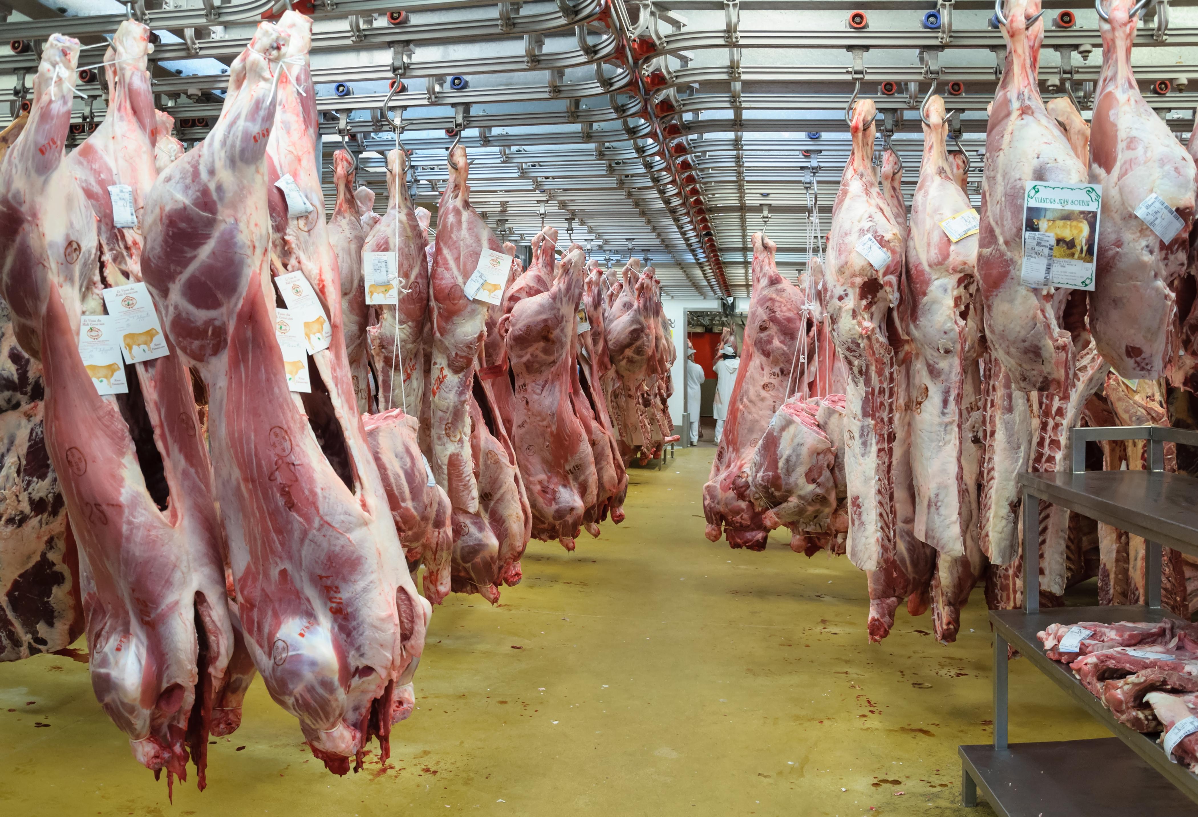 De acuerdo al Centro de Enfermedades Contagiosas (CDC por sus siglas en inglés) , más de 16,000 trabajadores en 239 plantas de carne se contagiaron de COVID-19 en los sexis primeros meses de 2020. De esta cifra más de la mitad de los/as trabajadores/as infectados/as son latinos/as. Foto cortesía de Wikipedia.