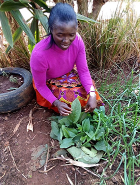 Sarudzai Muchagumisa, a member of Penhalonga United Methodist Church in Mutare, Zimbabwe, shows off her herb garden with more than 25 herbs often used to cure various ailments in Africa. Photo by Kudzai Chingwe, UM News.
