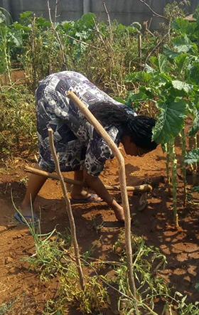 The Rev. Annie Zvingowaniseyi, associate pastor at Harare Innercity United Methodist Church, works in her garden at her home. She said she turned to gardening and meditation as a way to destress during the pandemic. Photo by Chenayi Kumuterera, UM News.
