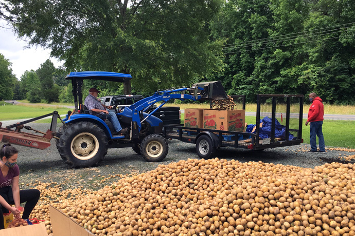 B.J. Copeland uses a tractor to load potatoes in the parking lot of Pleasant Hill United Methodist Church in Pittsboro, N.C., this past summer. Copeland recruited several fellow Rotary Club members to help with the challenge of transporting the produce. Photo courtesy of B.J. Copeland.