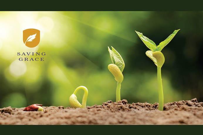Saving Grace offers clergy, laity and congregations a Wesleyan approach to financial planning. Image courtesy of the United Methodist Publishing House's Abingdon Press.