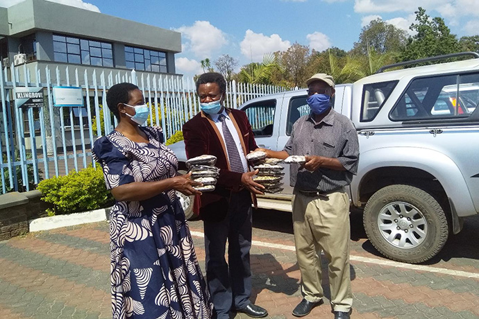 The Rev. Kelvin Mwandira (right) delivers mushrooms he has cultivated to customers Esther Razo and Solomon Chiripasi outside the Zimbabwe West Conference offices in Harare. Mwandira is among retired clergy in Zimbabwe who have turned to agriculture and other small business ventures to help fund their retirements. Photo by Chenayi Kumuterera, UM News.